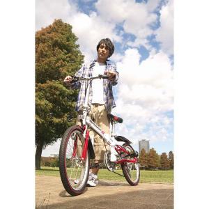 20型折りたたみ自転車 6段変速 スウィツスポートアウトドア スポーツ|kss-s