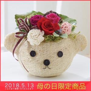 母の日 ギフト プリザーブドフラワー (ベアレッド)クマ くま かわいい バラ 薔薇|kss-s