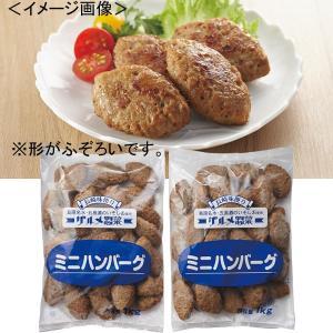 業務用ミニハンバーグ 計2kg 肉料理 まとめ買い 訳あり品|kss-s