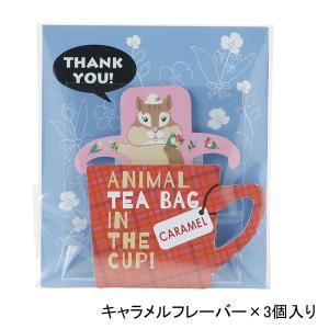 紅茶ティーバッグ リス アニマルインザカップ 冷え性 粗品 プレゼント|kss-s