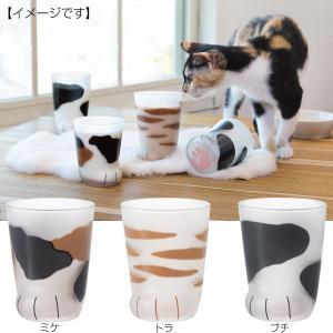 子猫 グラス ここねこ肉球 かわいい ネコ プレゼント コップ|kss-s