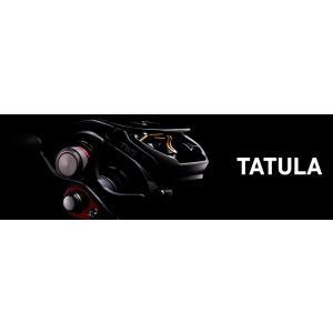 TATULA(タトゥーラ) 100HL-TW / Daiwa (ダイワ)|kt-gigaweb