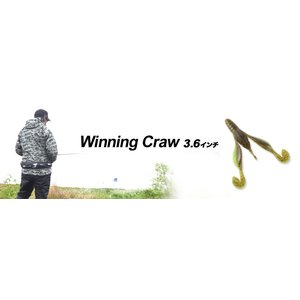 Winning Craw 3.6inch(ウイニングクロー3.6インチ)/ DSTYLE (ディスタイル)|kt-gigaweb