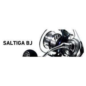 17SALTIGA BJ(17 ソルティガ BJ)3500H / Daiwa (ダイワ)|kt-gigaweb