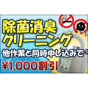 メンテナンスセット 車内ウイルス 除菌消臭クリーニング メンテナンスセット