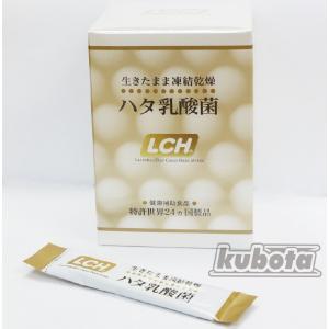 ハタ乳酸菌 LCH  2g×30包|kubota-p