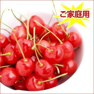 赤い宝石 さくらんぼ 佐藤錦 訳あり 家庭用 1kg