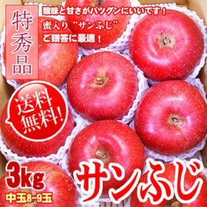 [送料無料] サンふじ 信州産 3kg特秀 中玉 8-9玉 人気りんご お歳暮 ギフト