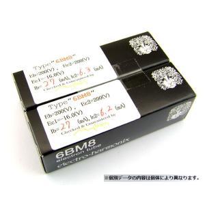 ECL82(6BM8)真空管セット 2本 〜ポスト投函便不可〜 (ワンダーピュア WP-ECL82TUBE) kugadenllc 04