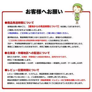 みかん 長崎県産 越冬 晩生 完熟伊木力みかん2.5kg×2箱|kuishinboucom|13