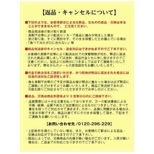 みかん 長崎県産 越冬 晩生 完熟伊木力みかん2.5kg×2箱|kuishinboucom|14