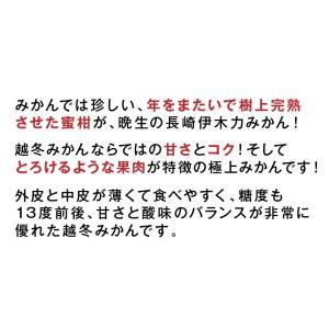 みかん 長崎県産 越冬 晩生 完熟伊木力みかん2.5kg×2箱|kuishinboucom|03