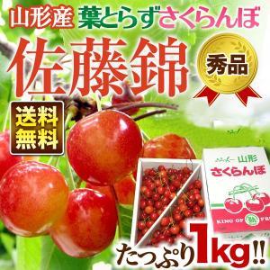 山形県産 さくらんぼ 武田さんの 朝摘み 葉取らずさくらんぼ...
