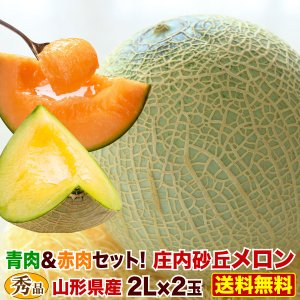 メロン 山形県産 庄内砂丘メロン 秀品2L玉×2個(約2.5...