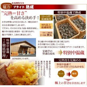 安納芋 訳あり あんのういも 安納いも 種子島産 産地直送 野菜 プチ安納芋2kg 2箱ご購入がお得 ちびころ蜜芋2kg 12月下旬以降順次出荷 |kuishinboucom|04