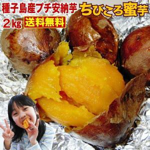安納芋(あんのういも・ 安納いも )種子島産 産地直送 野菜 プチ 安納芋2kg 2箱ご購入で送料無...