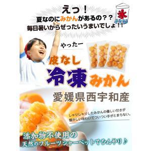冷凍みかん 600gx3袋 愛媛県産 八協ブランドみかん1.8kg 送料無料|kuishinboucom|02