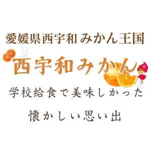冷凍みかん 600gx3袋 愛媛県産 八協ブランドみかん1.8kg 送料無料|kuishinboucom|03