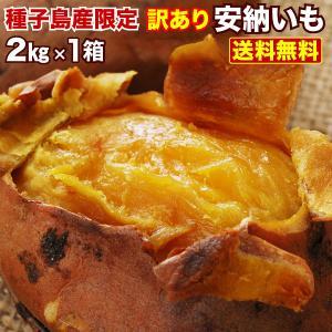 安納芋 訳あり 種子島産 安納いも 蜜芋 MLサイズ限定 2箱以上 送料無料 生芋(さつまいも)|kuishinboucom