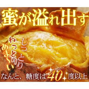 安納芋 焼き芋 1kg(安納芋いも 焼き芋)冷凍やきいも 元祖・冷やし芋 種子島産プレミア蜜芋使用 完熟安納芋焼き芋1kg|kuishinboucom|03