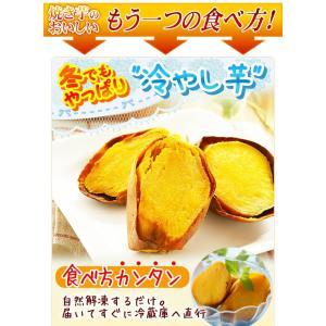 安納芋 焼き芋 1kg(安納芋いも 焼き芋)冷凍やきいも 元祖・冷やし芋 種子島産プレミア蜜芋使用 完熟安納芋焼き芋1kg|kuishinboucom|04