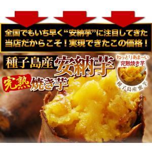 安納芋 焼き芋 1kg(安納芋いも 焼き芋)冷凍やきいも 元祖・冷やし芋 種子島産プレミア蜜芋使用 完熟安納芋焼き芋1kg|kuishinboucom|05