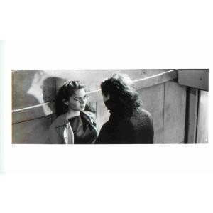 映画スチール036 白と黒の恋人たち|kujiranbooks