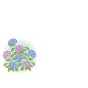 紙テーブルマット 紫陽花(100枚入)|kukan-rinkle