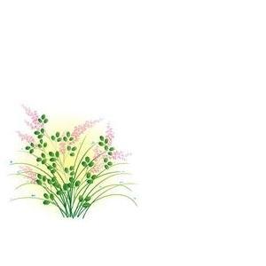 紙テーブルマット 萩(100枚入)|kukan-rinkle