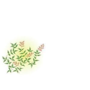 紙テーブルマット 南天(100枚入)|kukan-rinkle