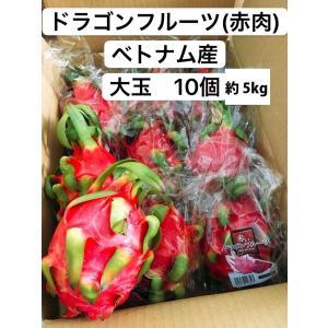 ドラゴンフルーツ(赤肉) ベトナム産 大玉 10個