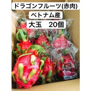 ドラゴンフルーツ(赤肉) ベトナム産 大玉 20個