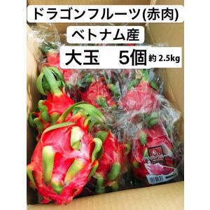 ドラゴンフルーツ(赤肉) ベトナム産 大玉 5個