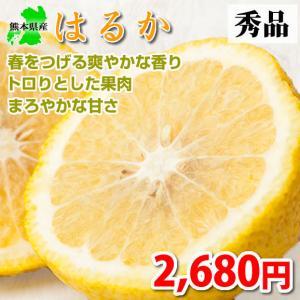新品種のみかん 熊本県産「はるか」 2kg(7~12玉入り) 【2箱購入で送料無料 3箱購入で1箱分おまけ】