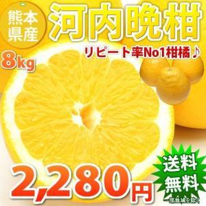 河内晩柑 みかん 文旦 訳あり 和製グレープフルーツ  ジュースにも 8kg 熊本県産 ジューシーみ...