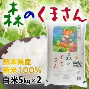 米 新米 送料無料 森のくまさん 令和元年産 熊本県産 白米 5kgx2 計10kg