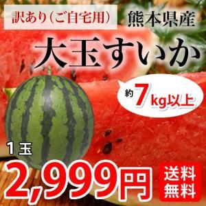 すいか 送料無料 大玉スイカ 訳あり 熊本県産 お取り寄せ 1玉 約7kg以上