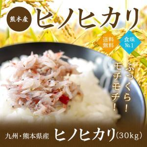 ヒノヒカリ 30kg 九州 熊本産 米 減農薬 送料無料