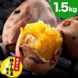 安納芋 訳あり 1kg 送料無料 種子島産 長期熟成 焼き芋 2セットで2セット分 3セットなら3セット分おまけ サイズ不揃い さつまいも 11月中旬-12月上旬より出荷