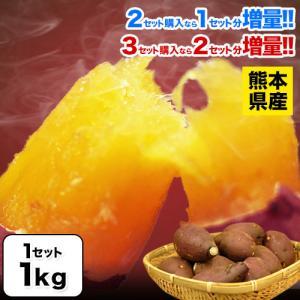 紅はるか 訳あり 1kg さつまいも 送料無料 熊本県産 2セット購入で1セット増量 大中小サイズ混合(不選別) 3-7営業日以内に出荷予定(土日祝日除く) kumamotofood