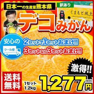 デコポンと同品種 熊本県産 訳ありデコみかん1.2kg(サイ...