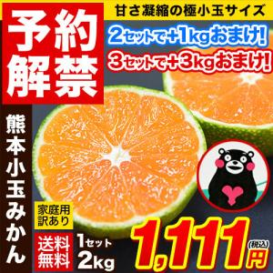 小玉 みかん 完熟 2kg 訳あり 送料無料 熊...の商品画像