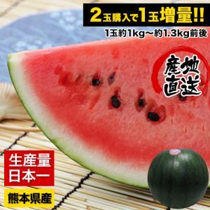 送料無料 すいかの本場熊本産訳あり黒小玉すいか ひとりじめ(...