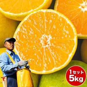 ■名称 柑橘  ■内容 熊本県産デコみかん(品種名:不知火)秀品約3kg/8〜10玉 ※サイズのご指...
