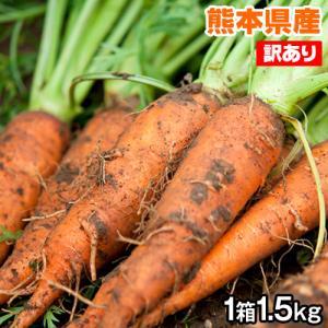 にんじん 1.5kg 送料無料 熊本県産 訳あり 家庭用 2セット購入で1セット分増量 3セット購入...