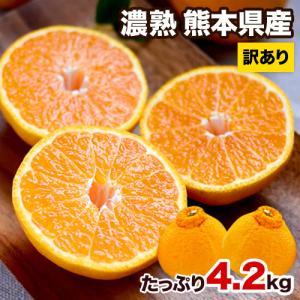 お徳用 濃熟 デコ みかん たっぷり4.2kg 速攻出荷 デコポン 同品種 熊本県産 旬 の 柑橘 産地直送 3-5営業日以内に出荷予定(土日祝日除く)