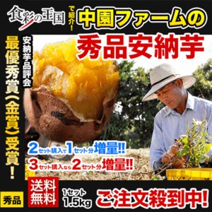 最高金賞受賞 中園ファームの安納芋 秀品 送料無料 2セット...