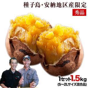 芋 中園ファーム 安納芋 秀品 1.5kg S〜2Lサイズ混...