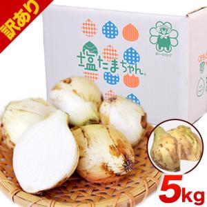 TVで紹介 送料無料 塩たまちゃん 子出藤 (ねでふじ)さんの塩タマネギ 梨のように甘い 熊本県産の新玉ねぎ 1セット1kg 5月末-6月中旬頃より順次出荷