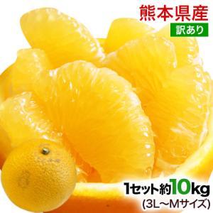 秀品 熊本産 はっさく 約10kg / 3L-Mサイズ 送料無料 柑橘の名産地 熊本産限定 八朔 7...